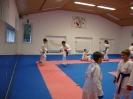 Kumite Workshop mit dem Landestrainer im vereinseigenen Dojo 2017_7