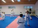 Kumite Workshop mit dem Landestrainer im vereinseigenen Dojo 2017_8