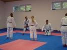 Kumite Workshop mit dem Landestrainer im vereinseigenen Dojo 2017_90
