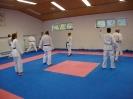 Kumite Workshop mit dem Landestrainer im vereinseigenen Dojo 2017_95