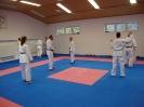 Kumite Workshop mit dem Landestrainer im vereinseigenen Dojo 2017_96