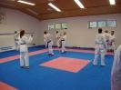 Kumite Workshop mit dem Landestrainer im vereinseigenen Dojo 2017_98