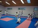 Kumite Workshop mit dem Landestrainer im vereinseigenen Dojo 2017_9